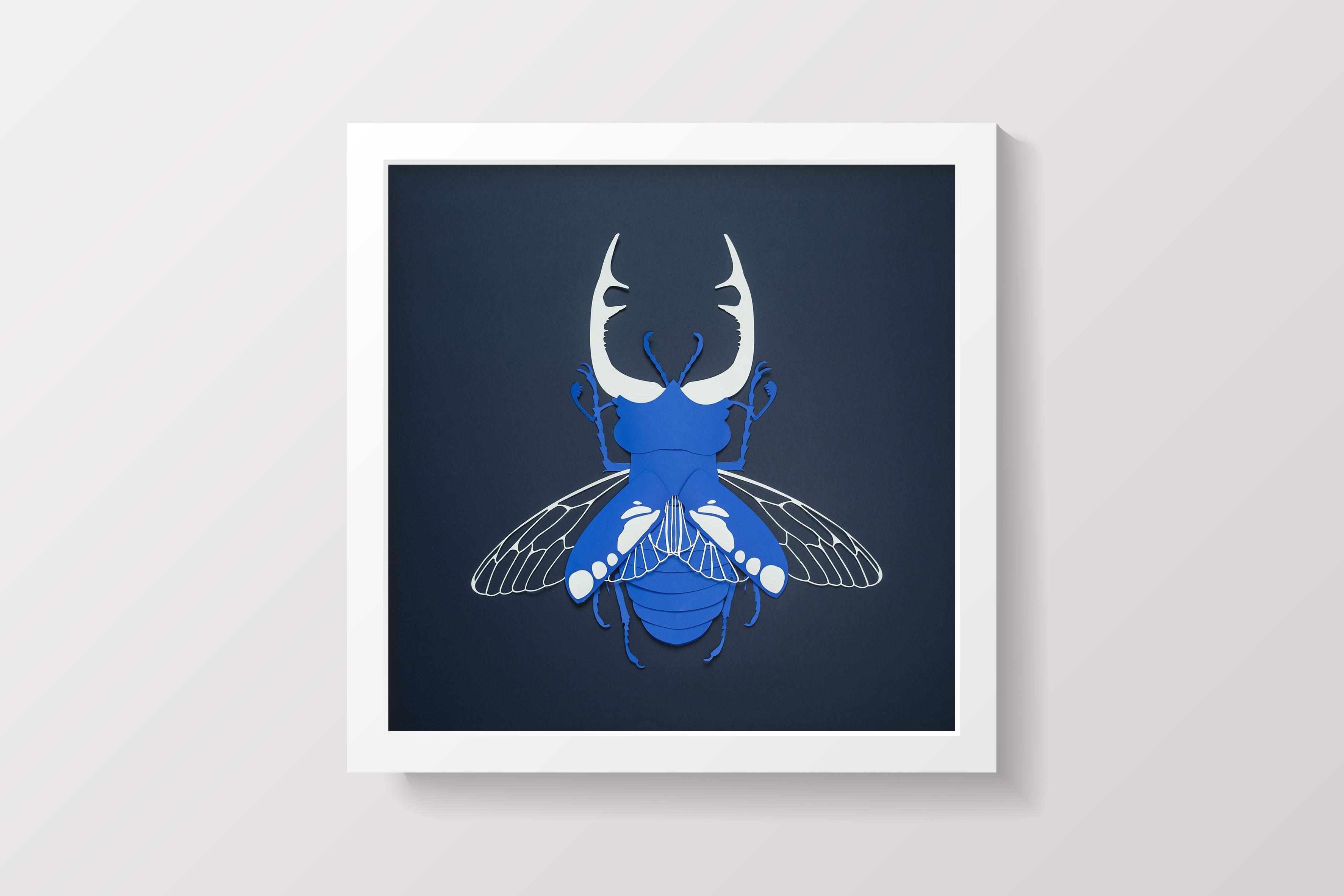 Scarabée bleu cadre blanc